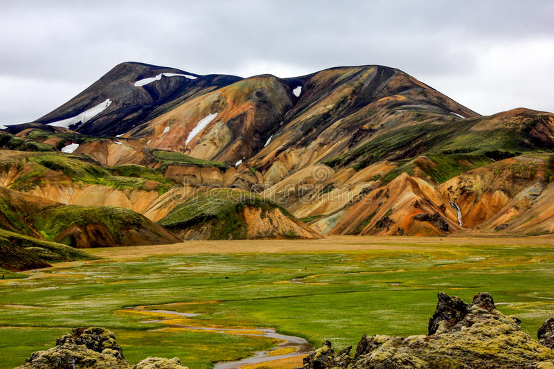 Exotic volcanic mountains and fieid of wildflowers in Iceland royalty free stock photos