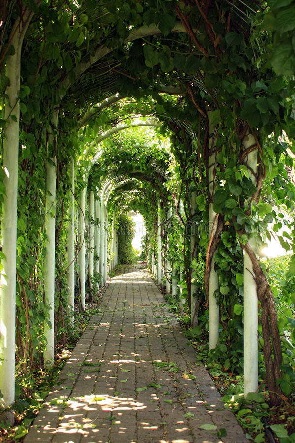 Green valley gazebos in garden. Natural tunel from green trees stock images