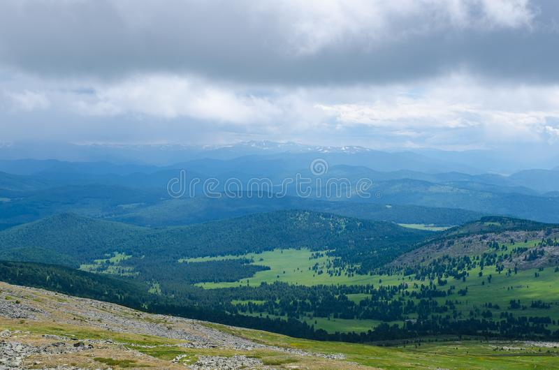 Green valley high on the mountains with the view to clear sky in summer day is spangled with blooming flowers stock photos