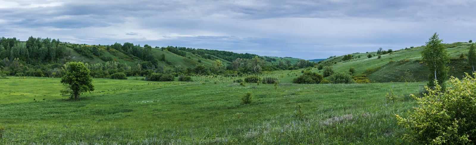 Green valley with a ravine. In the countryside royalty free stock photos
