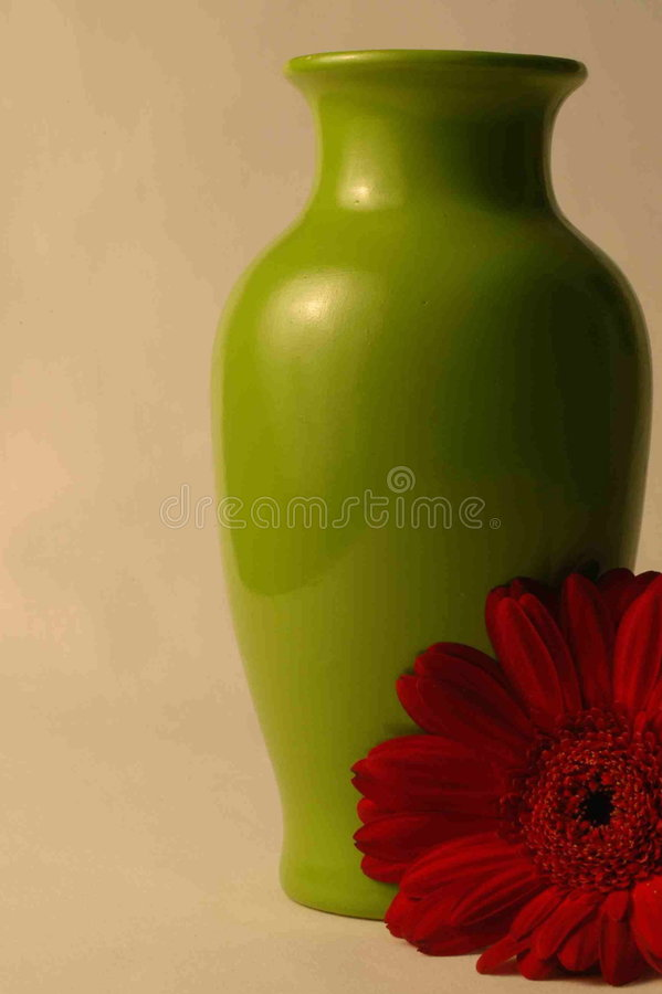 Green vase with red daisy royalty free stock photo