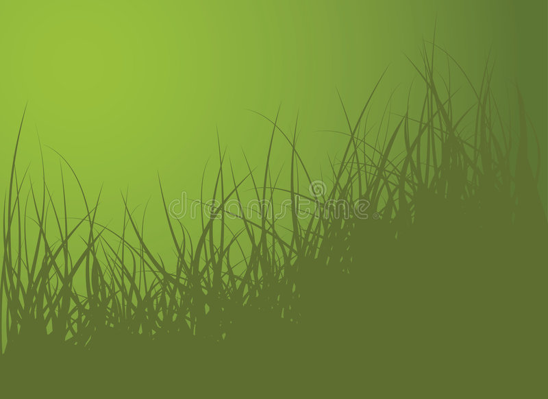 Green vector grass background. Illustration royalty free illustration