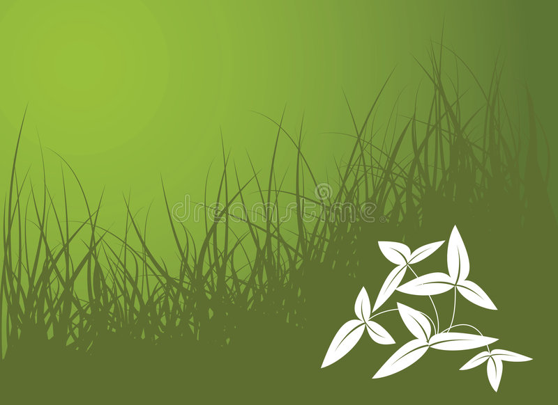 Green vector grass background. With white flower vector illustration