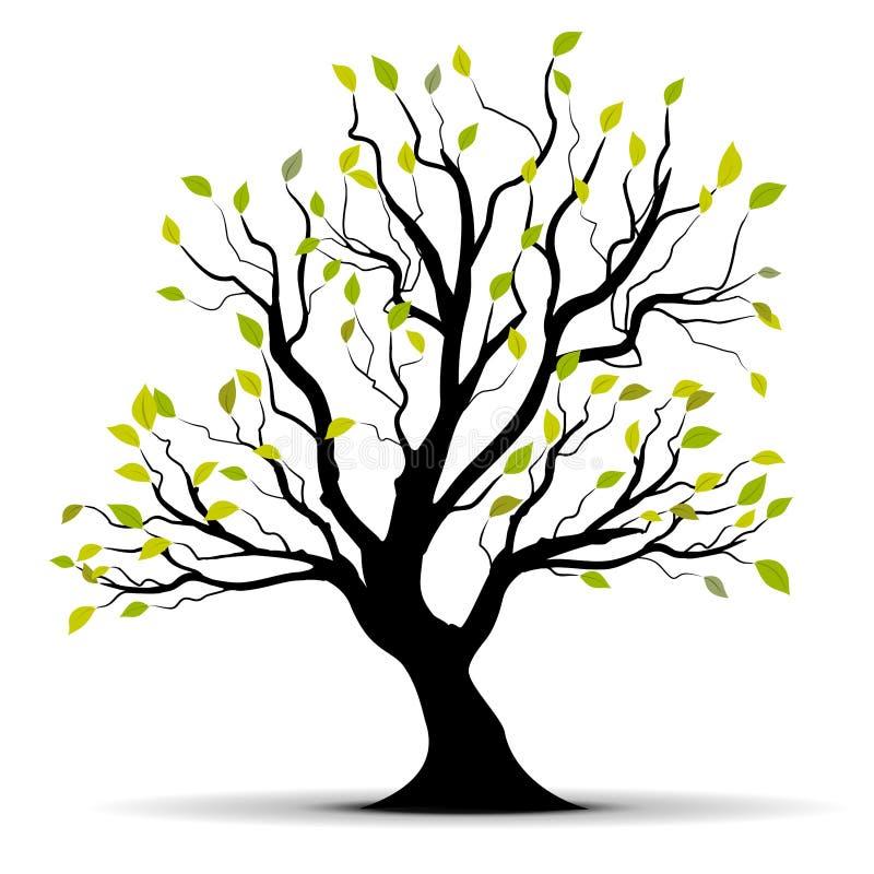 Green vector tree over white vector illustration