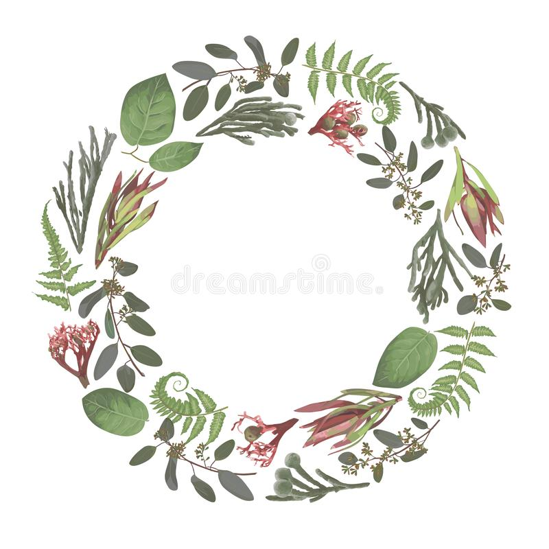Green vector wreath frame flowers and leaves.Branches, brunia, eucalyptus, leucadendron, gaultheria, salal, jatropha. Botanical. Green on white background. For royalty free illustration