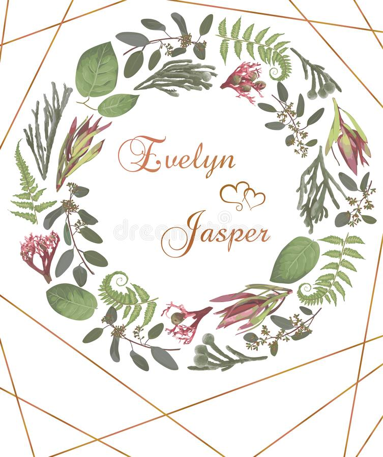 Green vector wreath frame flowers and leaves.Branches, brunia, eucalyptus, leucadendron, gaultheria, salal, jatropha. On white. Background with gold lines. For stock illustration