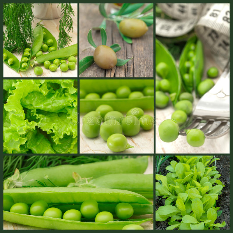 Download Green vegetables stock photo. Image of ingredient, nobody - 27018492