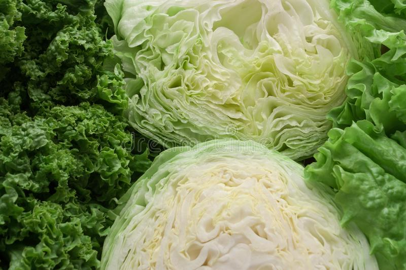 Cabbage, iceberg lettuce and lettuce as a food background. royalty free stock photo