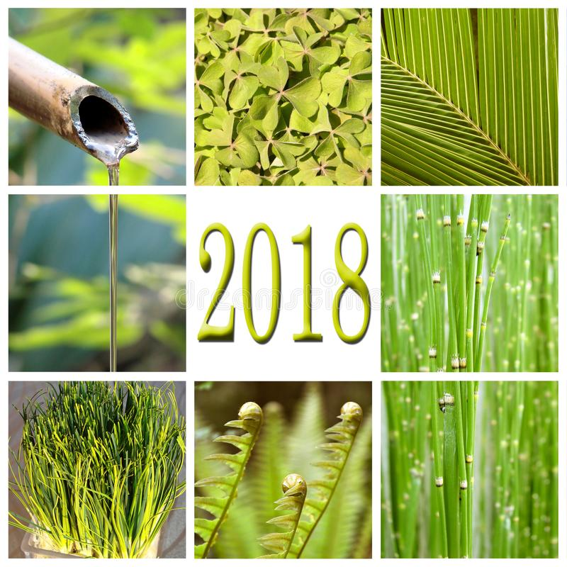 2018, green vegetation collage stock image