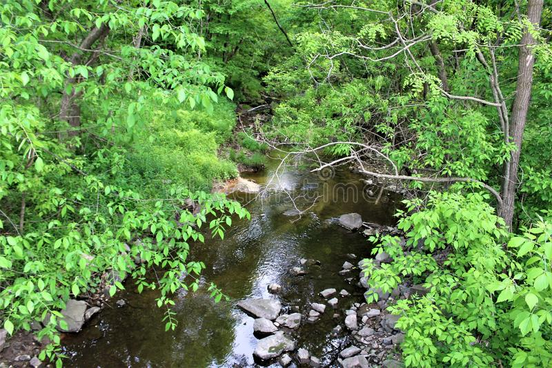 Trout River Stream, Franklin County, Malone, New York, United States. Green vegetation covered Trout River Stream, located in Franklin County, Malone, New York stock photography