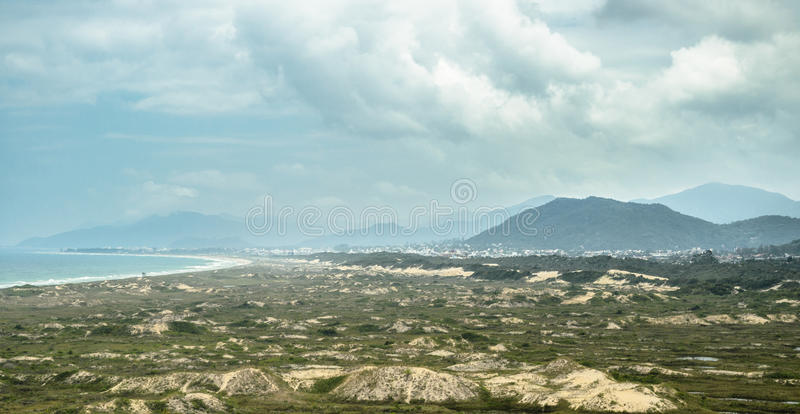 Green vegetation growing on sand banks, sea, beach and mountains on the background. royalty free stock photography