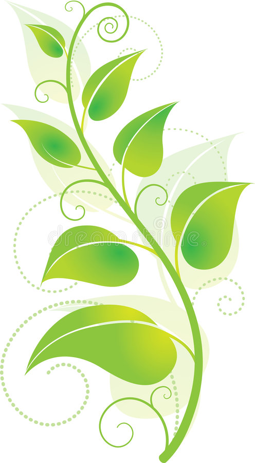 Green Vine royalty free illustration