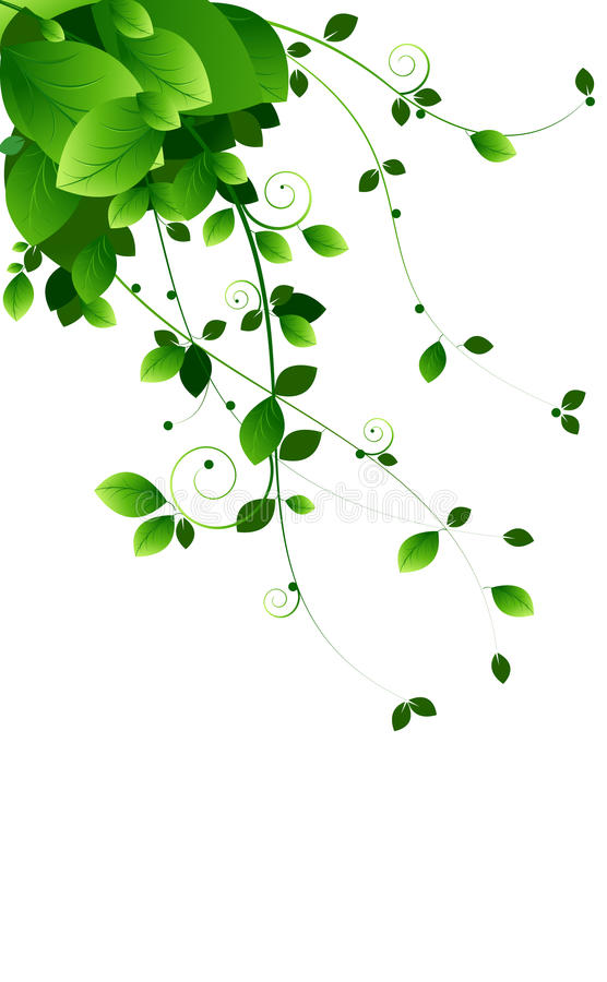 Green vines royalty free illustration
