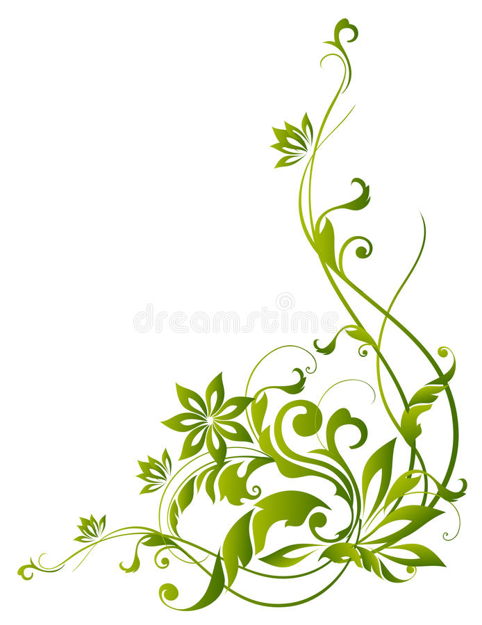 Green vines and flower. Drawing of green flower pattern in a white background vector illustration