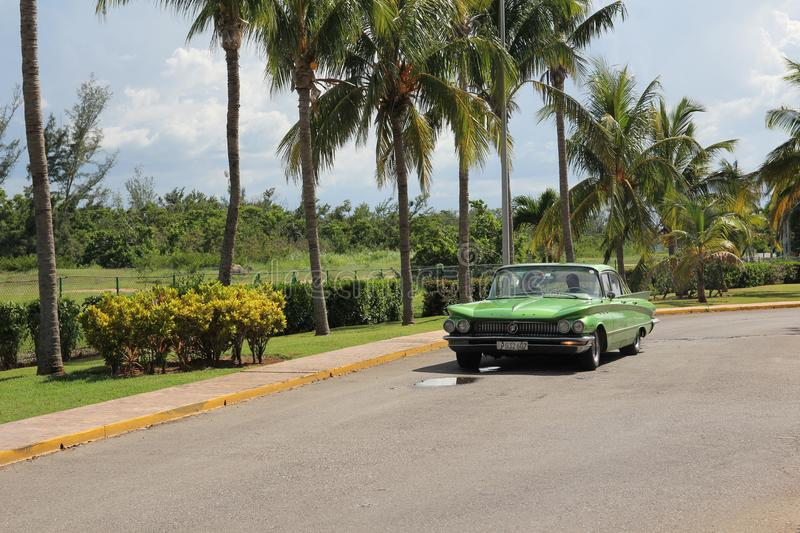 Green vintage American car rides along a row of tall palm trees royalty free stock photography