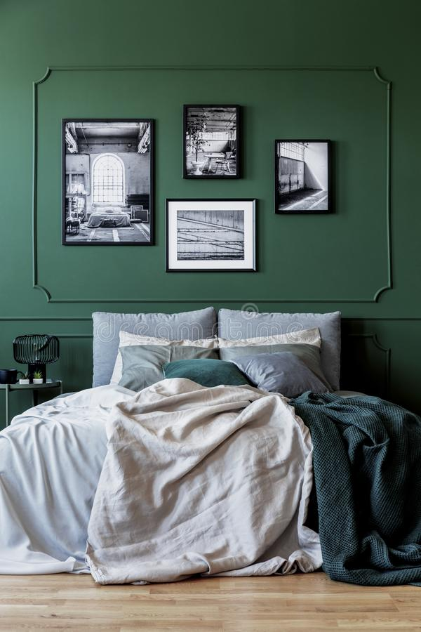Green wall with gallery of poster in trendy bedroom interior with double bed royalty free stock images