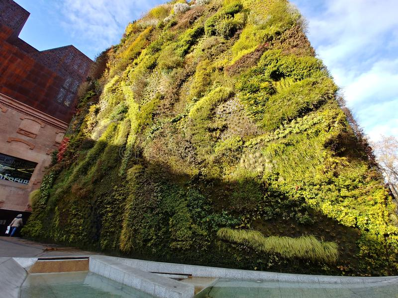 Green wall madrid royalty free stock images