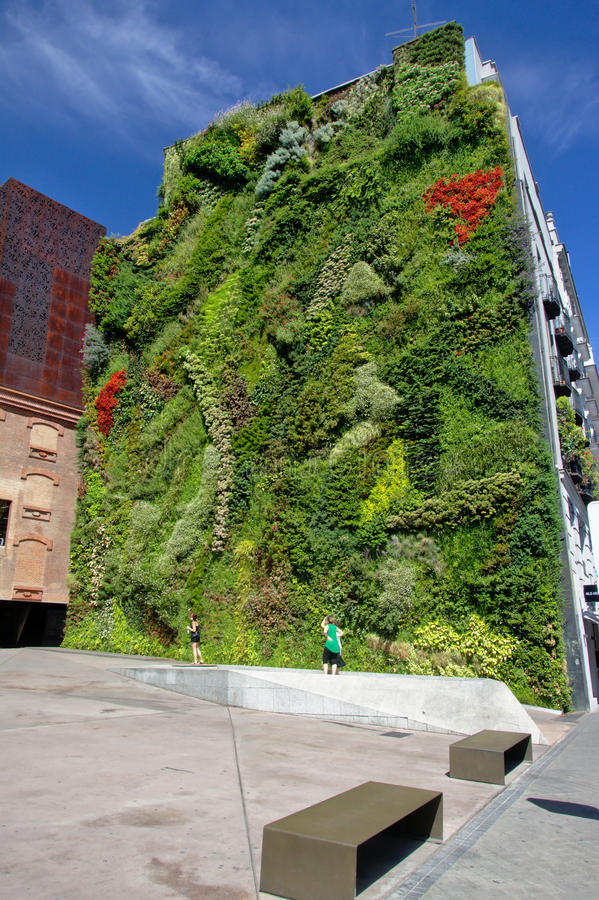 Free Green Wall Of The CaixaForum Museum, Madrid Royalty Free Stock Photo - 77681675