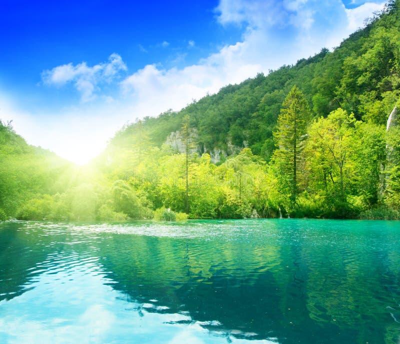 Green water lake royalty free stock photos