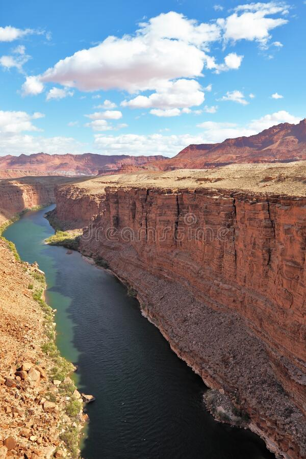 Green water of the river Colorado in abrupt coast. Majestic landscape. Green water of the river Colorado in abrupt coast of desert from red sandstone royalty free stock photo