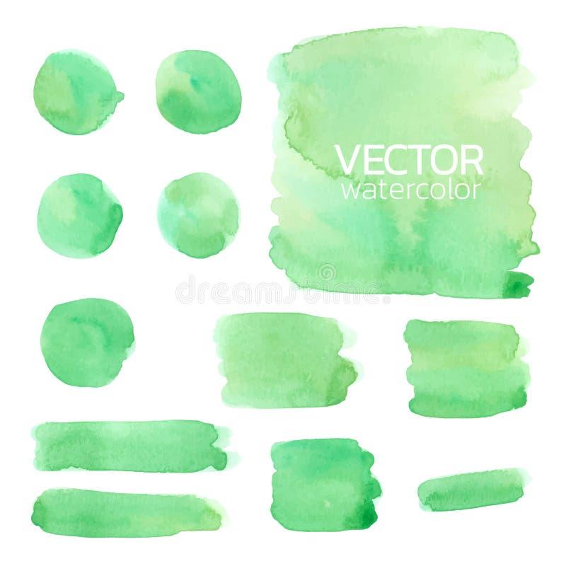 Green watercolor brush strokes. Vector brush stroke. For design royalty free illustration