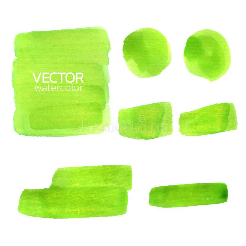 Green watercolor brush strokes. Vector brush stroke. For design vector illustration