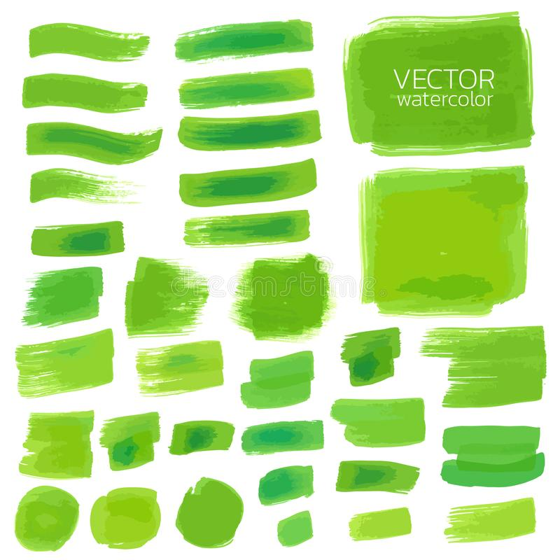 Green watercolor brush strokes. Vector brush stroke. For design stock illustration