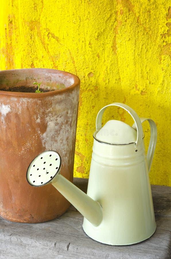 Download Green watering can stock photo. Image of gardening, garden - 24624156
