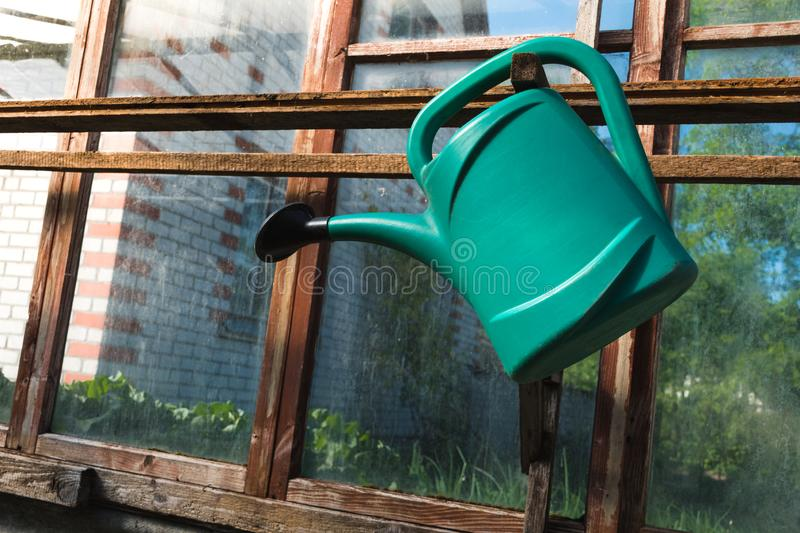 Green watering can hanging in a wooden greenhouse with glass windows. Close up on a green watering can hanging in a wooden greenhouse with glass windows at an royalty free stock photo