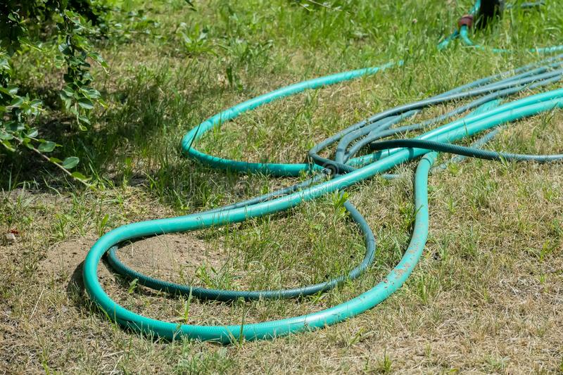 Green watering hose on the lawn stock photos