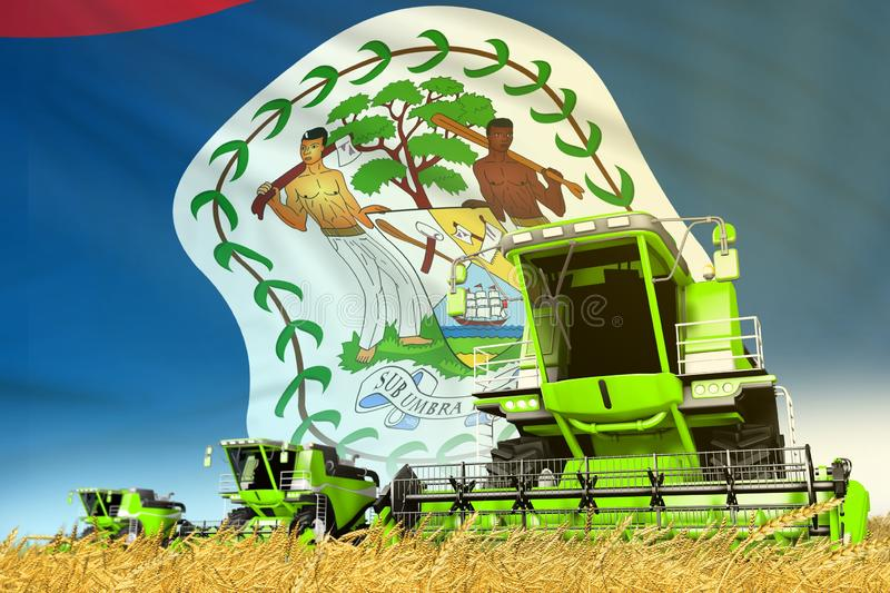 Green wheat agricultural combine harvester on field with Belize flag background, food industry concept - industrial 3D. Industrial 3D illustration of green rye royalty free illustration