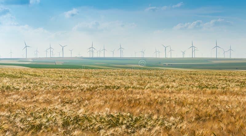 Eolian generators in a beautiful wheat field. eolian turbine farm. Wind turbine, wind field with wind turbines. Wind propeller. Wh stock photography