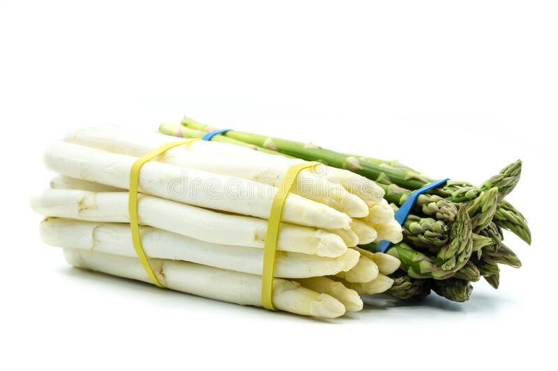 Green and white asparagus isolated on white background stock image