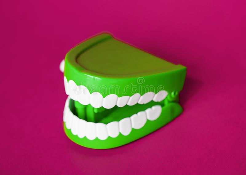 Green and White Denture Toy stock images