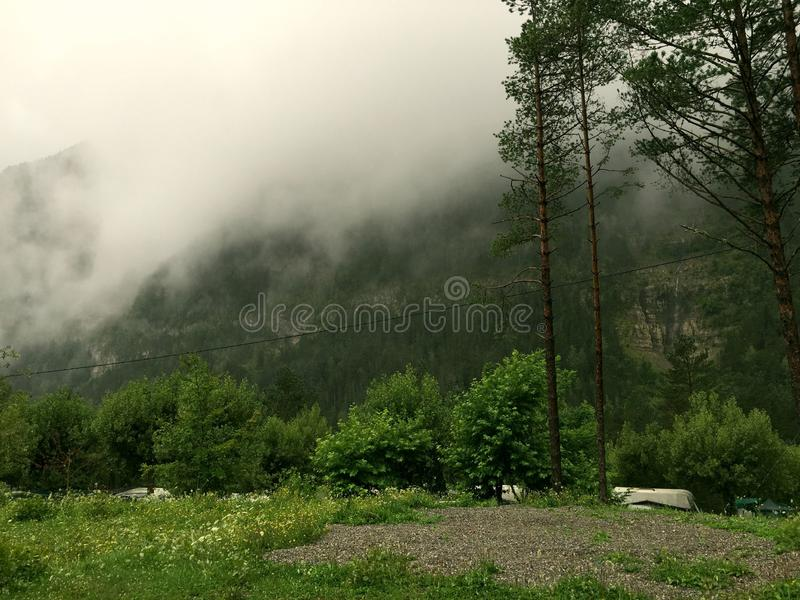 Mist in the forest. A green and white picture of a forest in Pirineos, Spain stock images