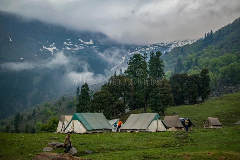 Green and White Tents Near Trees royalty free stock photography