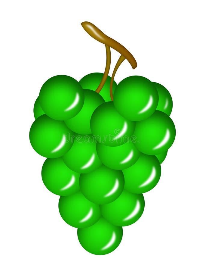 green wine grapes royalty free illustration