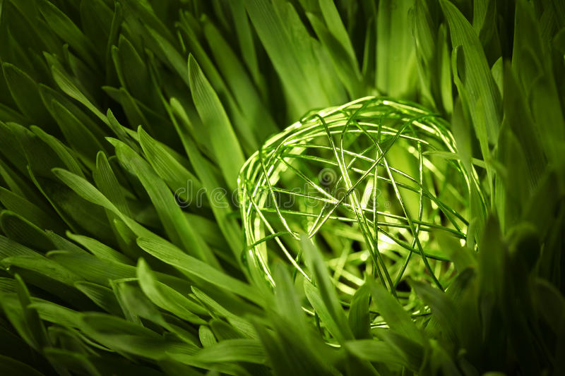 Green wire orb in meadow. Close-up of a green wire orb in green grass stock images