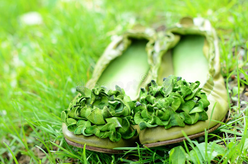 Download Green Woman Shoes With Flowers In Green Grass Stock Image - Image of summer, accessories: 26466915