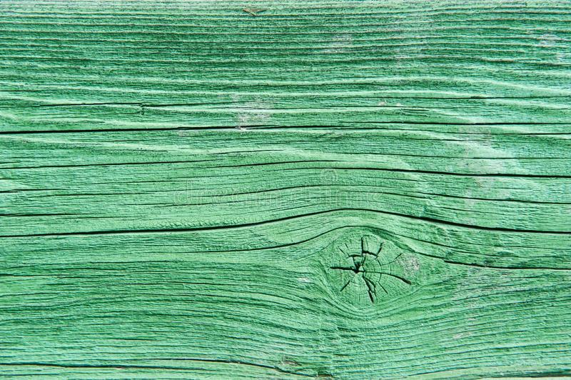 Green, Wood, Line, Grass royalty free stock image