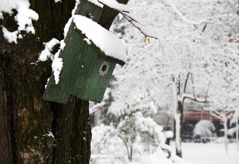 Green wooden bird house on a tree in a park on a snowy winter day gives shelter to small city birds stock image