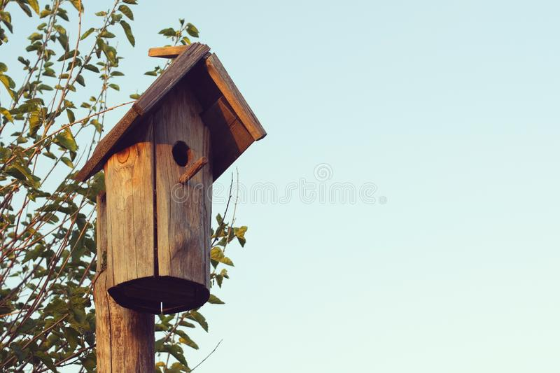 Vintage wooden Birdhouse on a tree against a blue sunset sky. Copies save stock photo