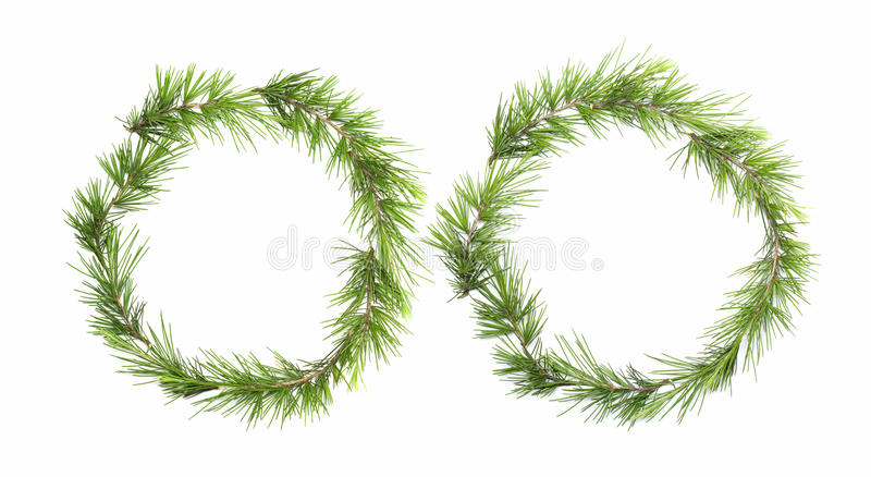 Green wreath isolated on white background royalty free stock images