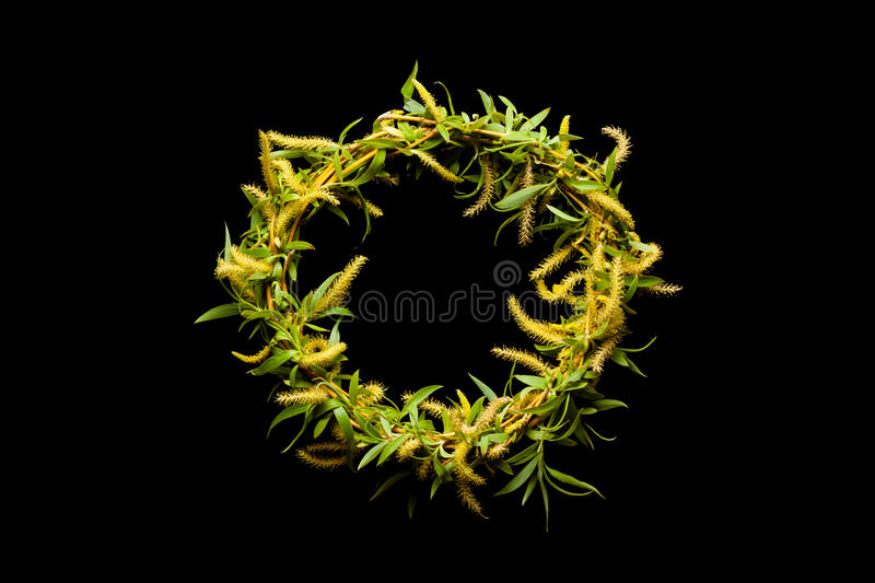 Green is the wreath their branches. stock photo