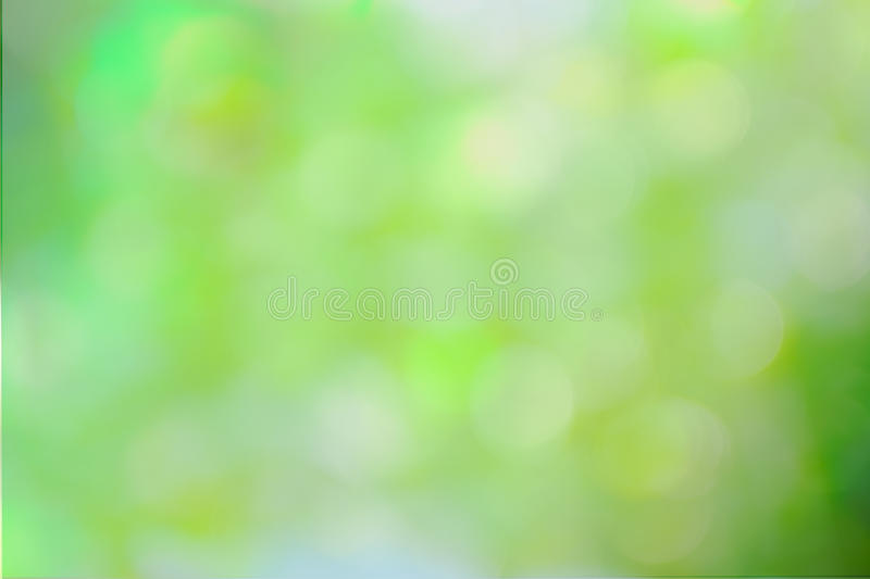 Green and yellow abstract defocused background. With sunshine stock images
