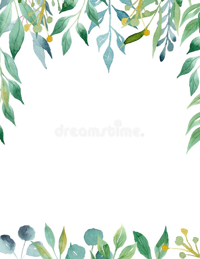 Green and yellow leaves aquarell hand drawn raster frame template. Tree branches top and bottom border with text space. Greenery poster decoration. Olive plant royalty free illustration