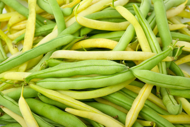 Green and yellow wax bean pods royalty free stock photography