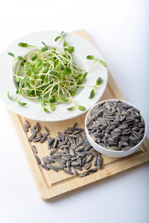 Free Green Young Sunflower Sprouts On Salad Plate And Sunflower Seeds Stock Photography - 59959762