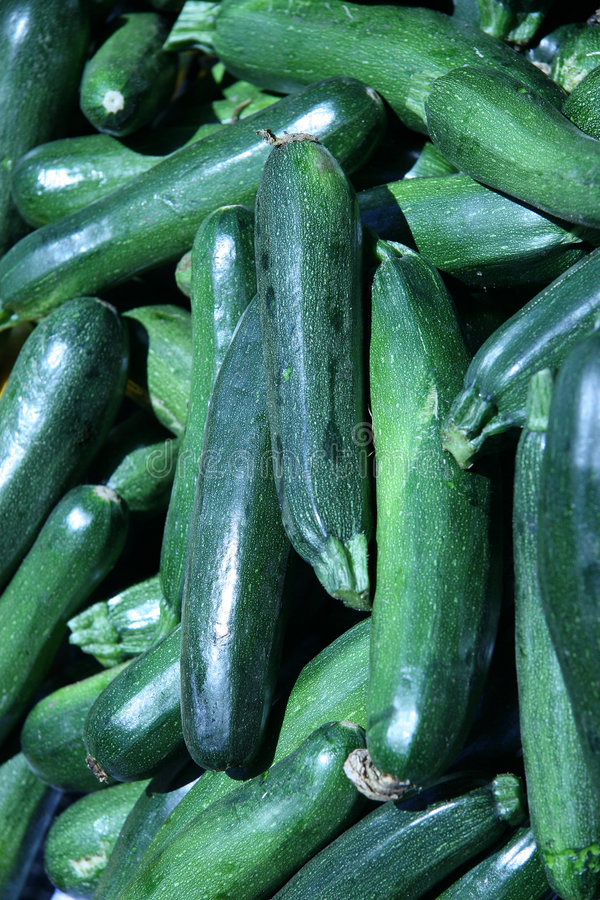 Green Zucchinis stock photography