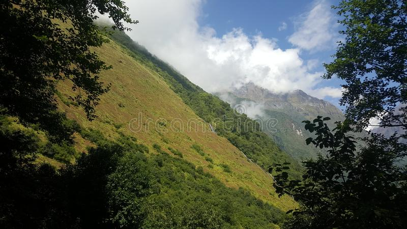 Greenary wzdłuż Annapurna Base Camp route zdjęcia royalty free